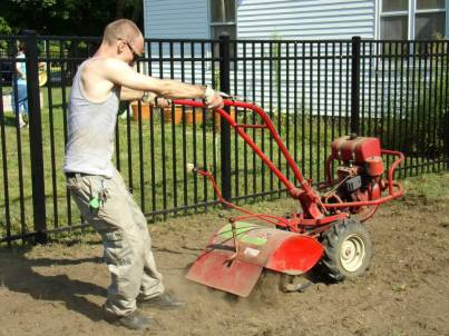 Struggling with the tiller to break up the soil